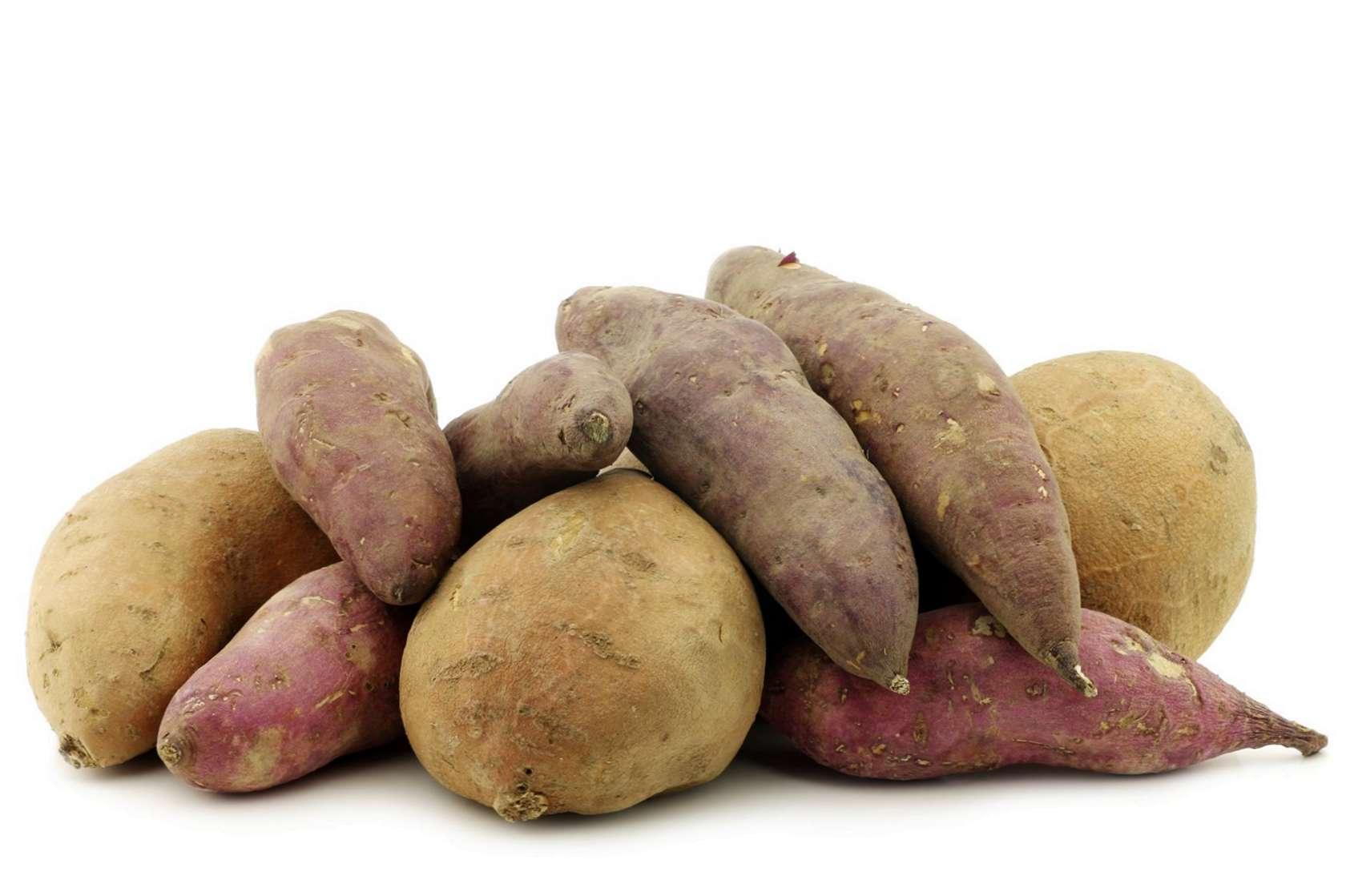 Différentes Variétés De Thym variétés de patates douces: en savoir plus sur les