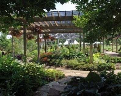 Ombre dense dans les jardins: Exactement ce qui est à l\'ombre - fr ...