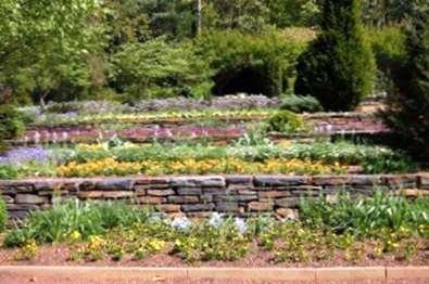 Hillside Terrace Gardens Come Costruire Un Giardino Con Terrazza
