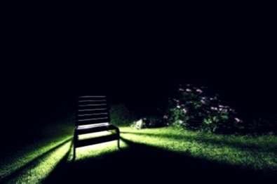 Illuminazione per esterni informazioni sugli alberi di