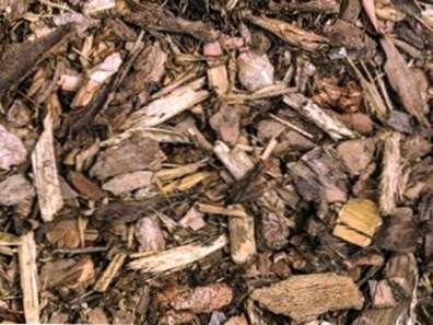 arten von rinde mulch tipps f r die verwendung von holz mulch in g rten. Black Bedroom Furniture Sets. Home Design Ideas