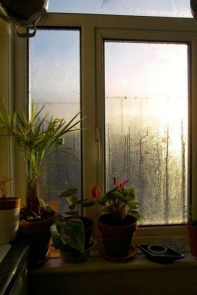 reduzierung der luftfeuchtigkeit im innenbereich was zu. Black Bedroom Furniture Sets. Home Design Ideas