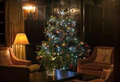 wie man einen weihnachtsbaum am leben erh lt tipps um ihren weihnachtsbaum frisch zu halten. Black Bedroom Furniture Sets. Home Design Ideas