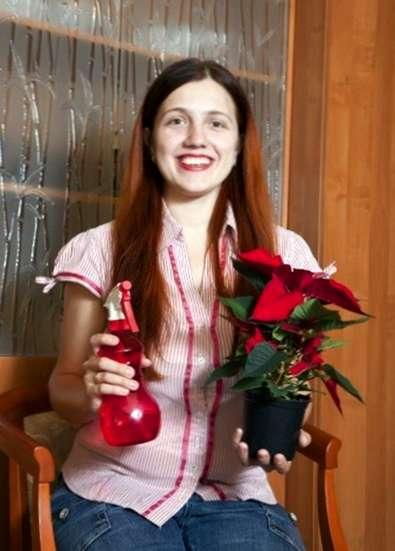 Stella Di Natale Quanta Acqua.Annaffiatura Poinsettia Come Si Fa A Innaffiare Una Pianta Di